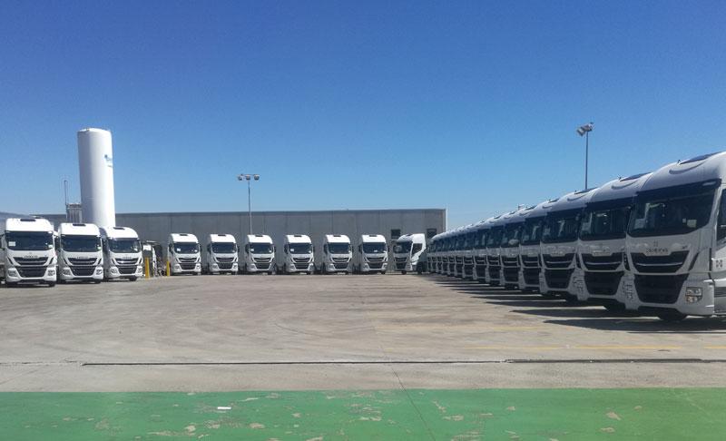 Grupo HAM rinnova ed espande la sua flotta di camion a GNL, offrendo ai suoi conducenti un ambiente confortevole e sicuro, per garantire un servizio di alta qualità