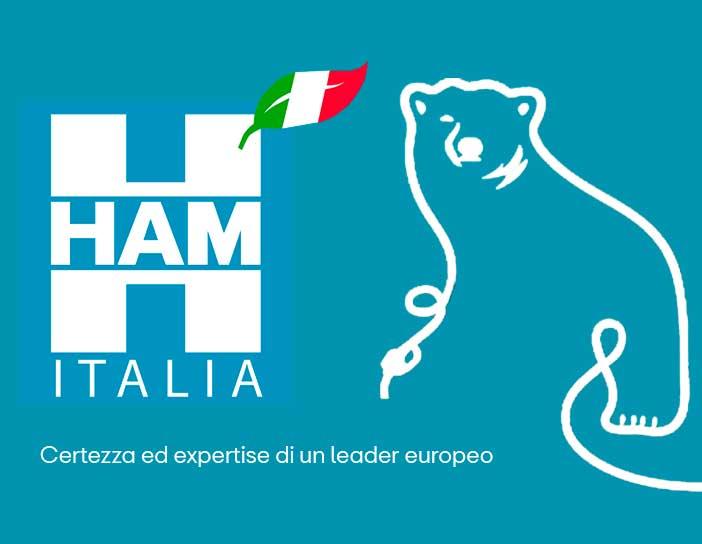 HAM Italia, una filiale di Grupo HAM, mira a diffondere la cultura e l'ingegneria del gas naturale liquefatto per il suo completo sviluppo in Italia